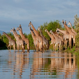 Adventure Safaris in Tanzania