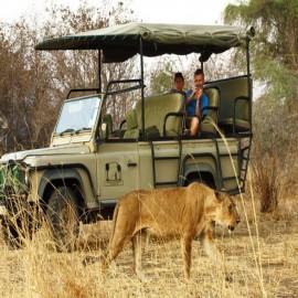 Tanzania Safaris and Tours Holidays