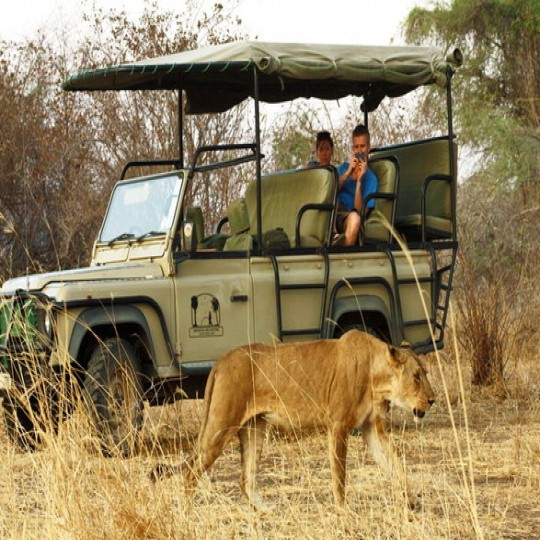 Tanzania Safaris and Tours Holidays