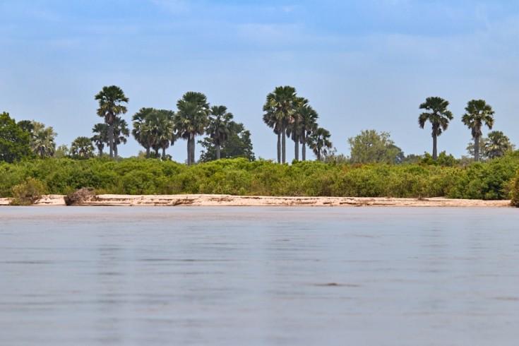 The Rufiji River